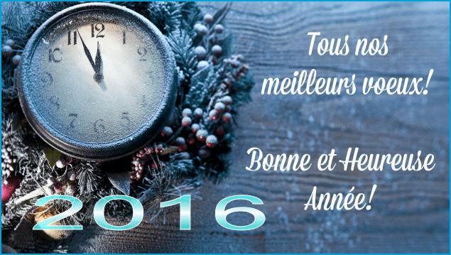 Sézanne Triathlon vous souhaite une Bonne Année 2016 !